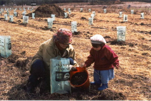 Olympic Landcare Planting 2000