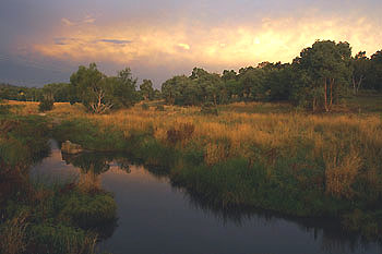 Ginninderra Creek. Photo: John P. Baker